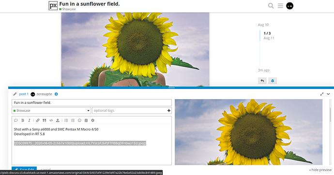 Screenshot from 2020-08-11 08-23-20
