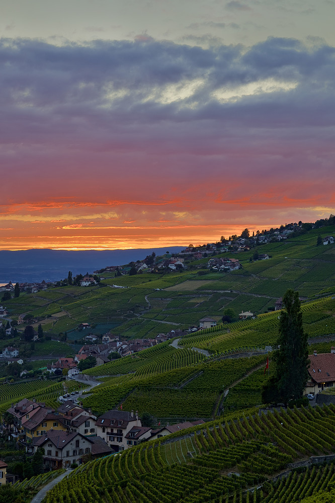 sunset.over.lavaux