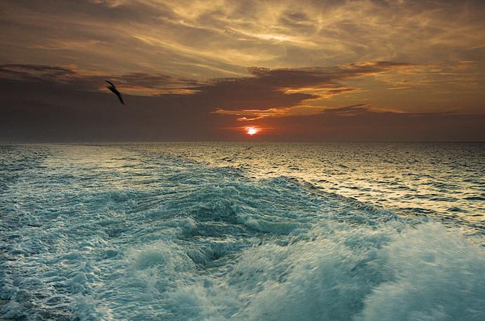 sunset_v0-Split Complement_dt