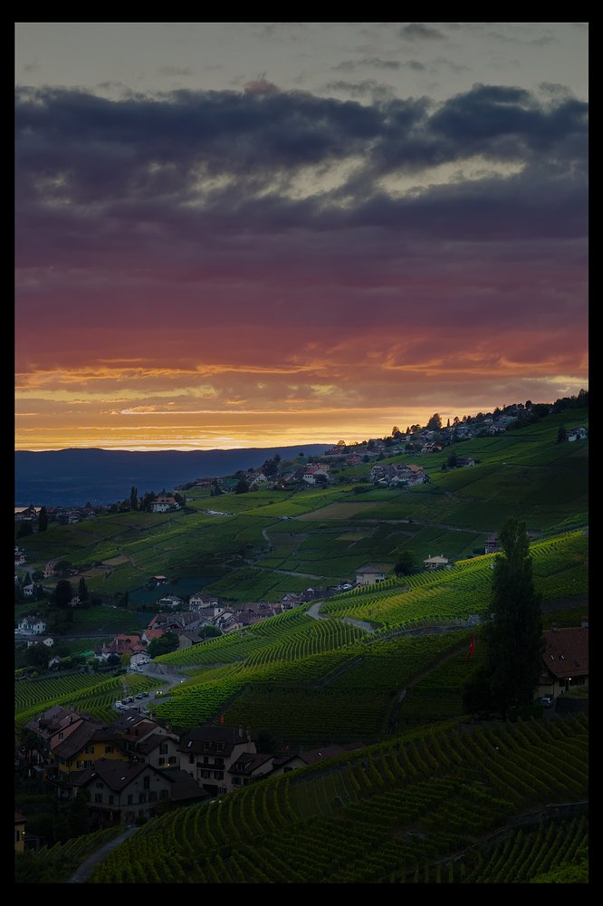 Sunset over Lavaux_0V2A2112