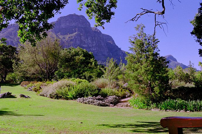 Kirstenbosch Neg 35_0_ed