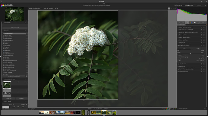 Screenshot_2021-07-03_09-56-16