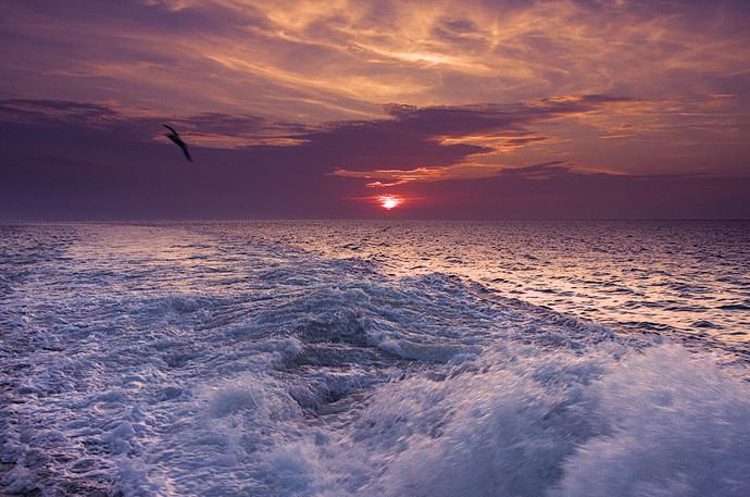 sunset_v4-Analoguos_dt